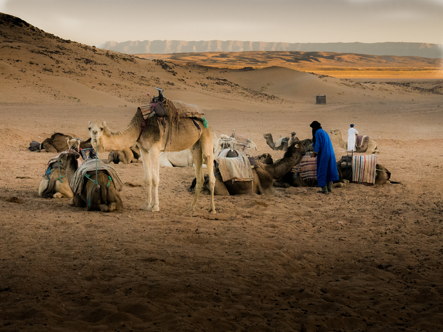Visions of Morocco