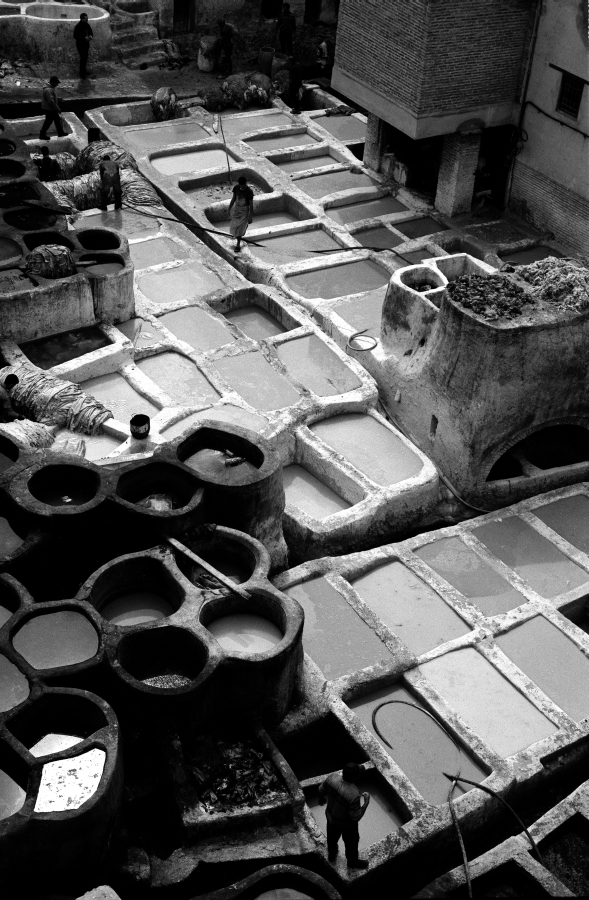 Tannery of Fés